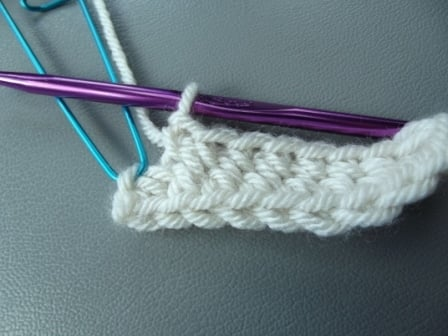 Work 2 Single Crochet in Last Chain