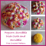 Popcorn Scrubbie Dish Cloth and Scrubbie