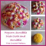 Popcorn Scrubbie Dish Cloth and Scrubbie