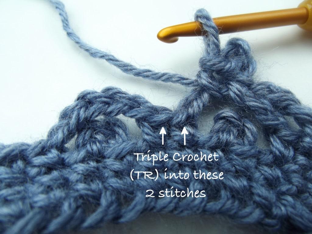 Triple Crochet into Next 2 Stitches