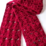 Cluster and Shells Scarf