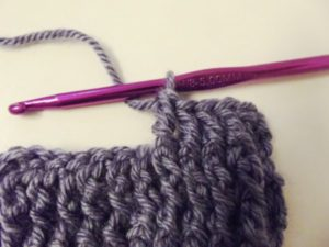 Wrap the yarn and pull through last two loops.
