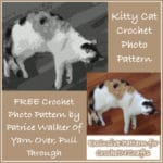 Kitty Cat Crochet Photo Pattern - by Patrice Walker - Yarn Over, Pull Through