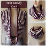 Picot Friendly Cowl ~ FREE Crochet Pattern