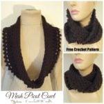 Mesh Picot Cowl ~ FREE Crochet Pattern