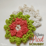 Cluster Picot Flower Scrubby ~ FREE Crochet Pattern