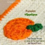 Pumpkin Applique by Cream Of The Crop Crochet